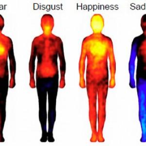 Mapa emocional-corporal