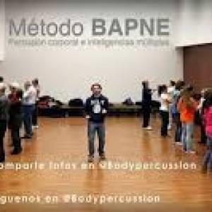 """Comunicaciones que presenta el equipo de investigación de percusión corporal BAPNE a las Jornadas """"Redes 2014"""" (Universidad de Alicante)"""