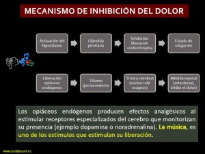 diapositiva dolor