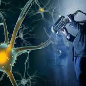 La música poderoso estimulador de la neuroplasticidad cerebral